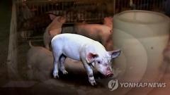 경기도 안성서 구제역 의심 젖소…오늘 저녁 결과 발표 예상