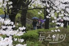 오후부터 전국에 봄비…중부 미세먼지 오전까지 '나쁨'