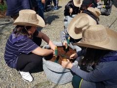 영천시, 어린이 농부학교 시범운영