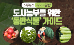 도시농부를 위한 '동반식물' 가이드