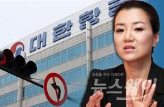 """한진그룹, KCGI 주장 '반박'…조현민 전무 선임 """"문제없다"""""""