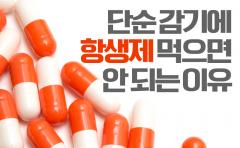 [카드뉴스]단순 감기에 항생제 먹으면 안 되는 이유