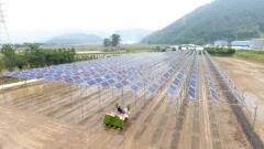 남동발전, KOEN 보급형 영농형 태양광 실증단지서 2차년도 모내기 실시