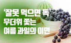 '잘못 먹으면 독' 무더위 쫓는 여름 과일의 이면