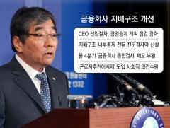 금융회사 '지배구조' 개선 착수…'종합검사제도' 부활