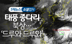 태풍 종다리 북상…'드루와 드루와'