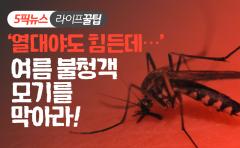 [라이프 꿀팁]'열대야도 힘든데···' 여름 불청객 모기를 막아라!
