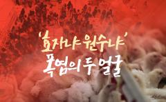[카드뉴스]'효자냐 원수냐' 폭염의 두 얼굴