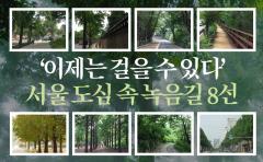 '이제는 걸을 수 있다' 서울 도심 속 녹음길 8선
