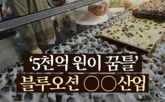'5천억 원이 꿈틀' 블루오션 ○○산업