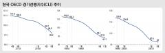 IMF 이후 최악?…OECD 韓 경기선행지수, 하락세 맞지만 폭 얕아