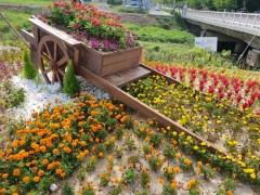임실군, 사계절 꽃피는 거리조성 추진