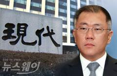 """정의선 부회장 """"날개꺾인 주가를 방어하라"""" 특명"""