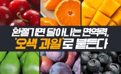 환절기면 달아나는 면역력, 오색 과일로 붙든다