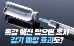 독감 백신 맞으면 혹시, 감기 예방 효과도?