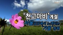 '천고마비' 의 계절, 서울 곳곳에서 느껴지는 가을정취