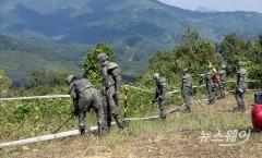 경기도, DMZ 세계유산 등재 추진…북한과 공조도 검토
