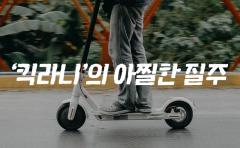 도로 위 시한폭탄…'킥라니'의 아찔한 질주