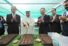 황창규 KT 회장, UAE서 스마트팜 구축