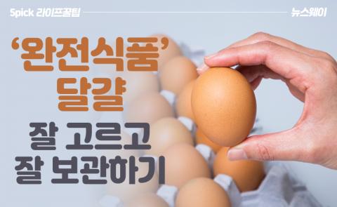 '완전식품' 달걀, 잘 고르고 잘 보관하기