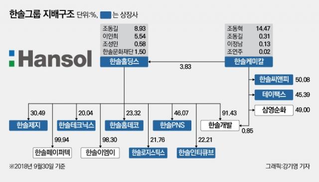 [新지배구조-한솔①]이인희 고문 '보이지 않는 손'···경영 손 뗐지만 영향력 여전