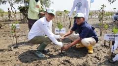 중부발전, 인니 '맹그로브 숲 가꾸기' 공유가치창출 활동 전개