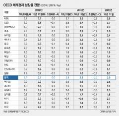 """경기둔화라지만 평균 이상…OECD """"韓 경제, 아주 괜찮은 성적"""""""