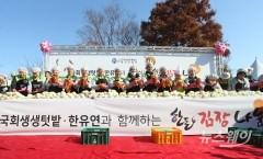 국회텃밭-한유연과 함께하는 한돈 김장 행사