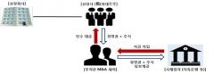 """금감원 """"무자본 M&A 추정 기업 집중 모니터링"""""""