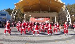 크리스마스엔 임실치즈테마파크에서 산타를 만나세요!