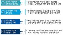 """금감원 """"분식회계·부실감사에 외감법상 과징금 도입"""""""