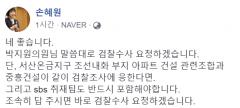 """손혜원 """"박지원 말대로 검찰조사 요청하겠다"""""""