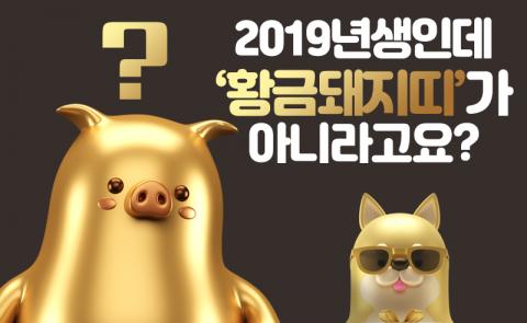 2019년생인데 '황금돼지띠'가 아니라고요?