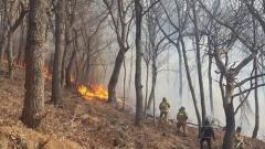 부산서 쓰레기 태우다 산불…강풍에 진화 난항