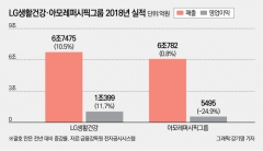 차석용, 지난해 서경배에 완승…화장품 '빅2' 격차 더 벌어졌다