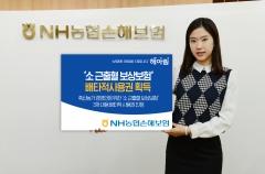 농협손보, '소 근출혈 보상보험' 3개 배타적 사용권 획득