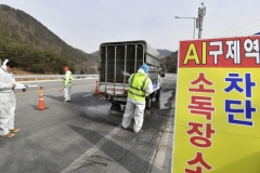 정선군, 구제역 차단방역 총력 대응
