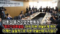 중견기업연합회 회장단과 만난 이낙연 총리