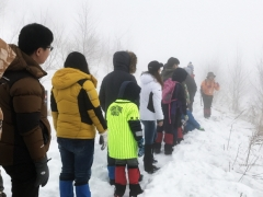 겨울 숲을 즐기는 또 하나의 방법, '하이원 스노우트레킹'