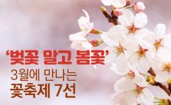 '벚꽃 말고 봄꽃' 3월에 만나는 꽃축제 7선