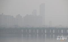 OECD 미세먼지 최악 도시 상위 100곳 중 44곳 한국도시