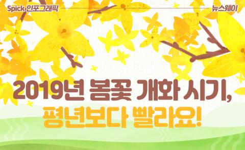 2019년 봄꽃 개화 시기, 평년보다 빨라요!