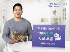 메리츠화재, 업계 최초 장기 고양이보험 출시