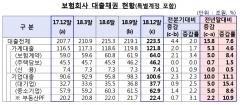 지난해 보험사 대출채권 224조…상반기 DSR 관리지표 도입