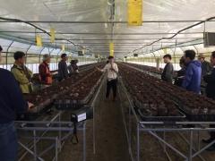 산림조합중앙회 산림버섯연구센터, '표고버섯 전문가양성' 과정 개설