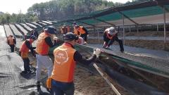 KGC인삼공사, 폭설피해 농가 긴급 지원 나서