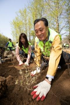 새마을금고중앙회, 미세먼지 저감 나무심기 봉사활동
