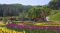 용인시, 농촌테마파크서 봄꽃축제 '스프링 가든파티' 연다