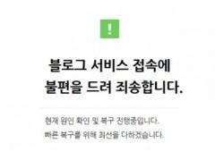 네이버 블로그 '먹통', 접속 차단…이용자 불편 초래