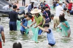 보성군, '율포해변 활어잡기 페스티벌' 개최